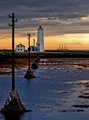 Seeking the shores