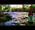 Sweetwater Summer Ale