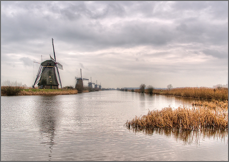 "Dutch ""Polder"" Landscape"