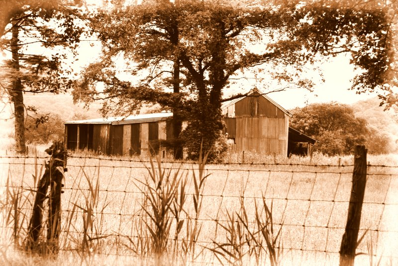 A sepia shed