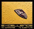 Excellence - No Compromise No Substitute