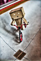 danbo goes BMXing