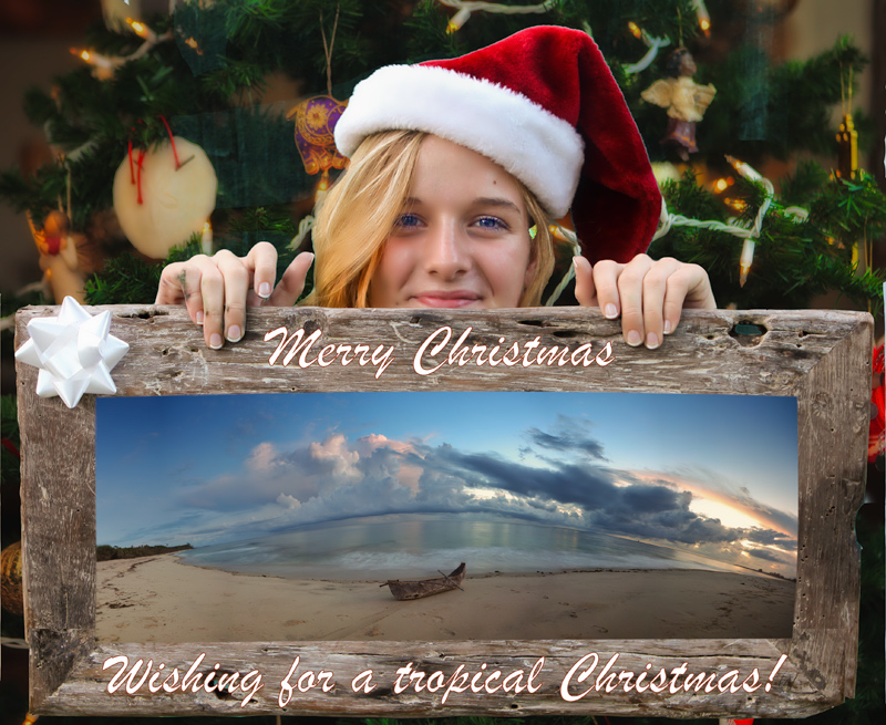 Wishing for a tropical Christmas