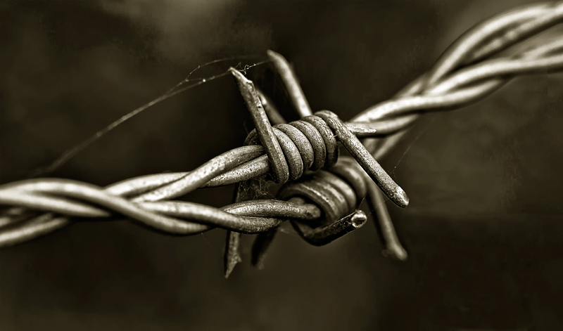 B is for Barbed Wire
