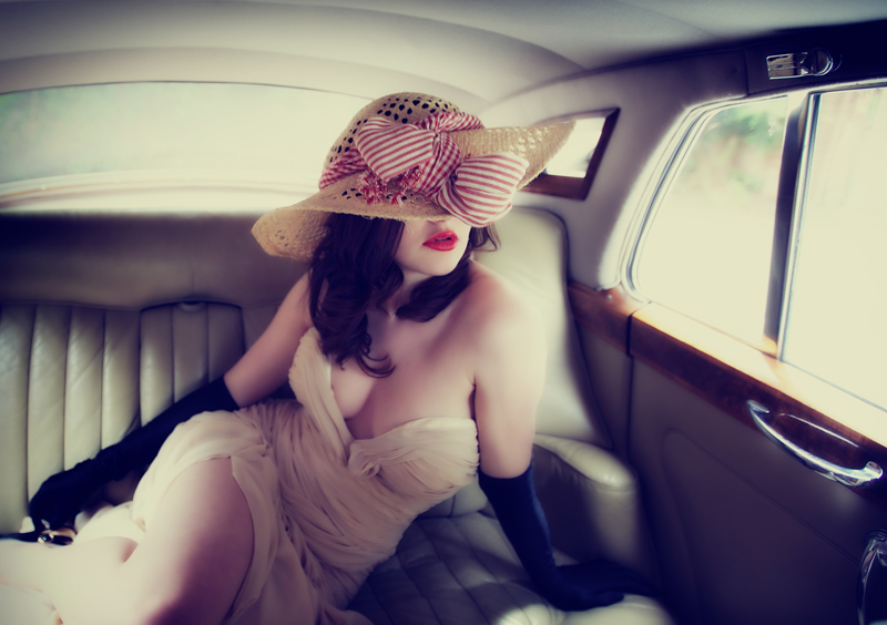 The Elegant Passenger