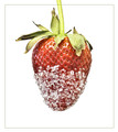 Crystal Strawberry