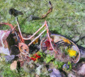 Monet's Bicycle