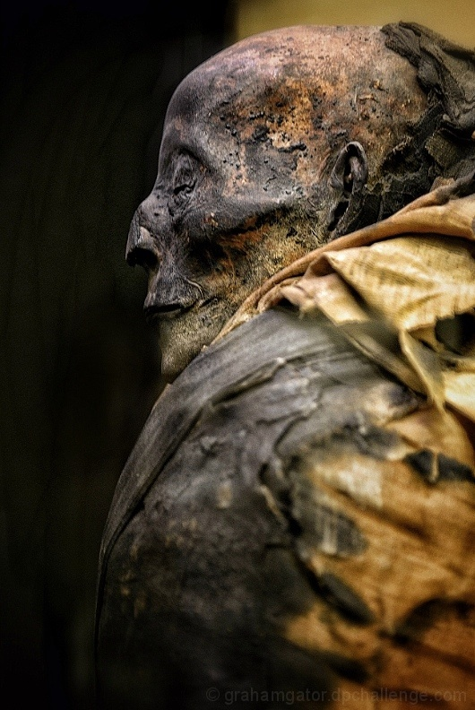 Mummy of Harwa - Dynasty 25