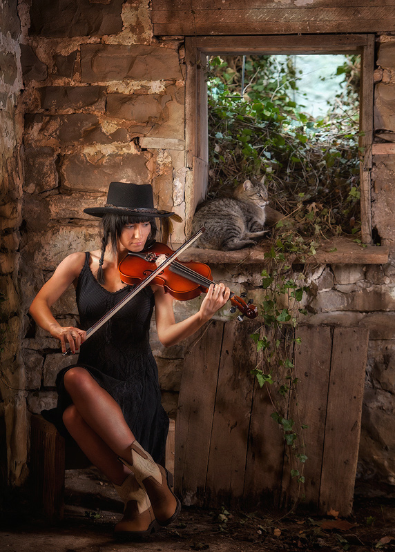 A Cat, A Fiddle and a Barn Window