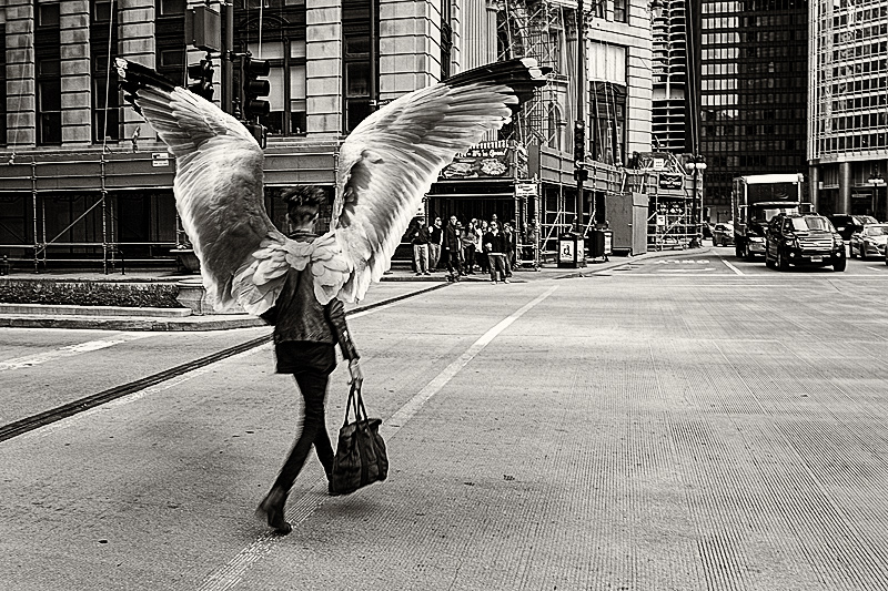 Spreading her wings