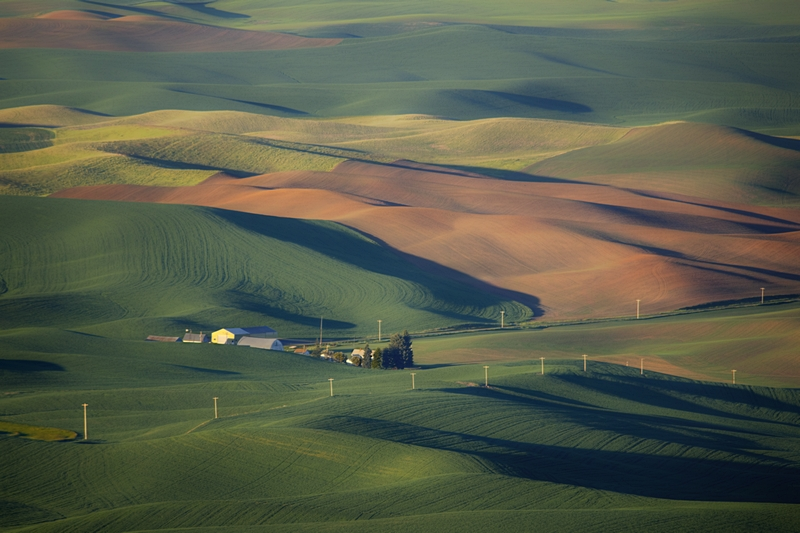 View from Steptoe Butte State Park