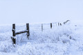 Icy_Fence