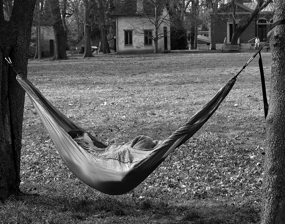 Napper on the grounds of the Henry Clay Estate ~ Lexington, KY