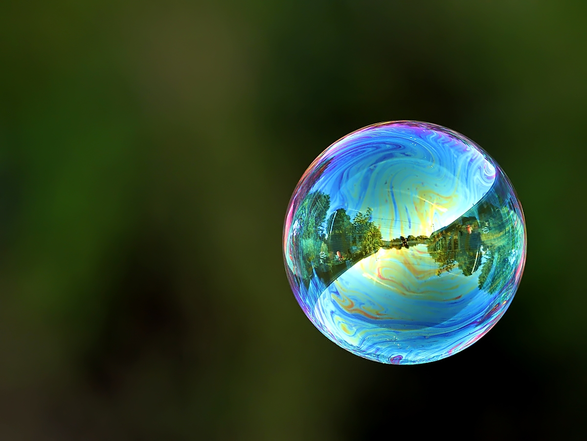 My World in a Bubble