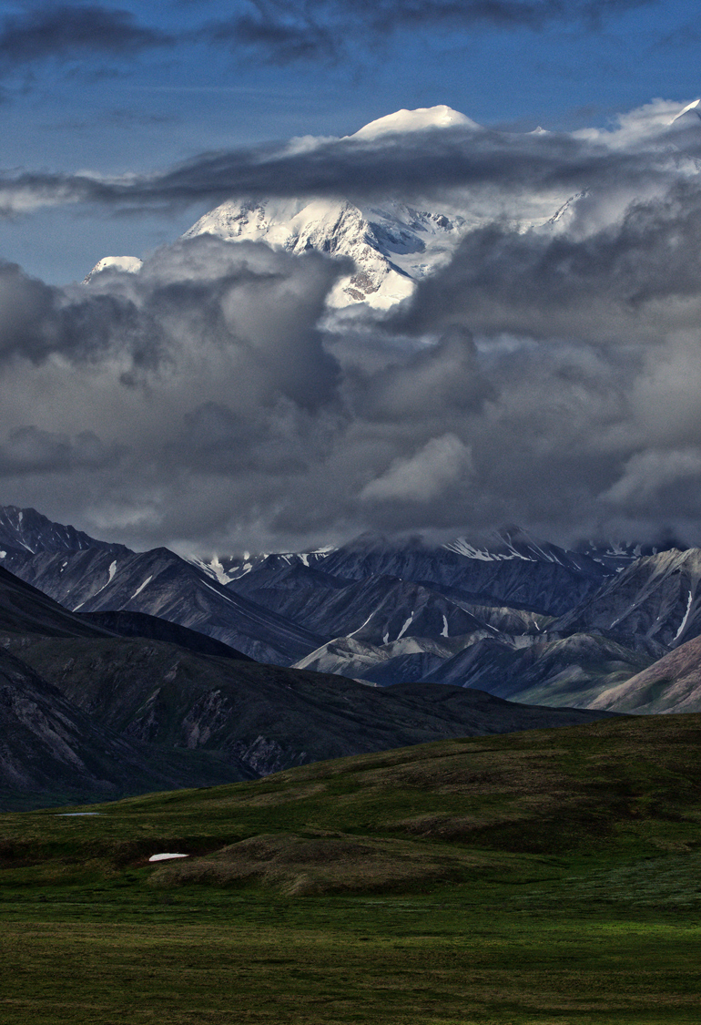 Denali in Early Summer