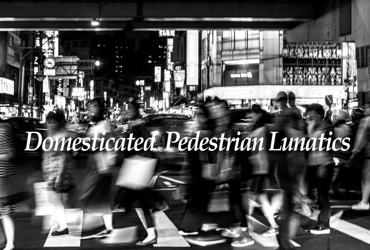 Domesticated Pedestrian Lunatics