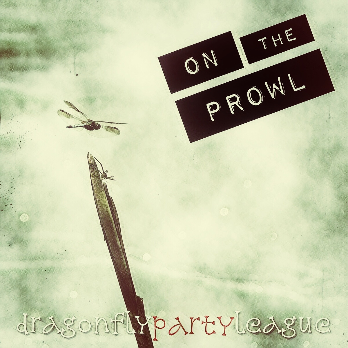 dragonfly party league
