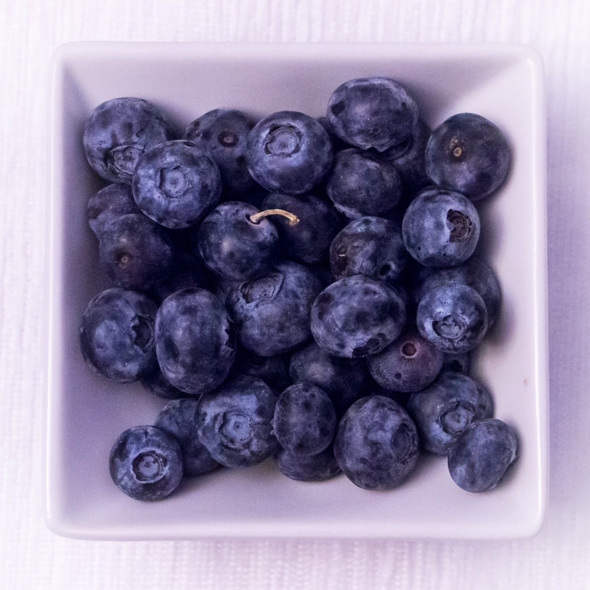 Study of Blueberries
