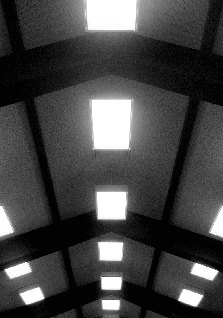 Library Lights