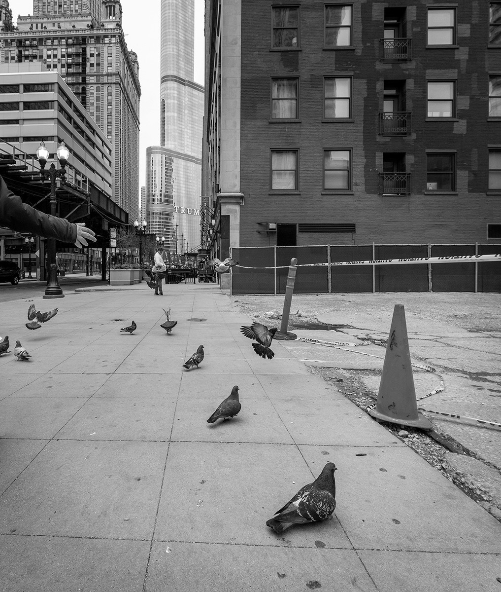 Get your pigeons in a row