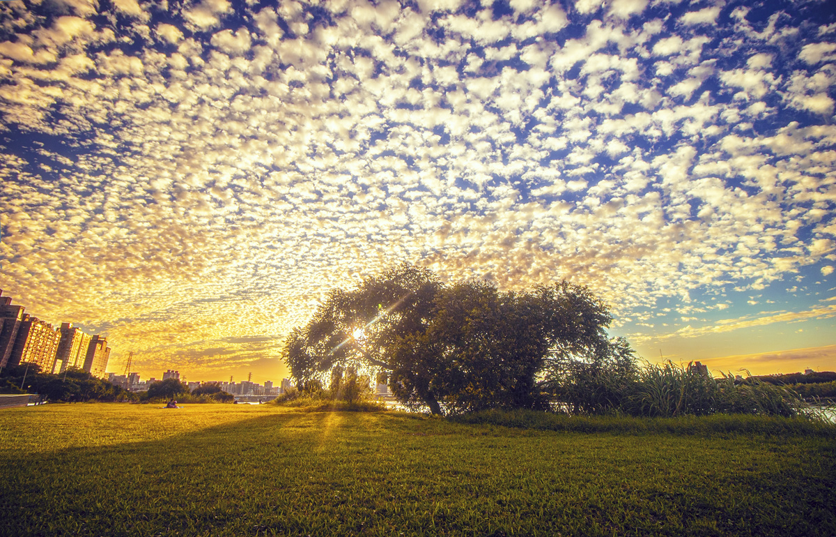 Altocumulus sunset