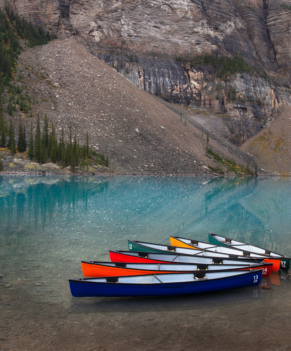 Canoes to rent