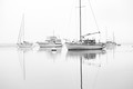 Boats and Fog