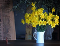 Daffodils on a Wood Worker's Counter