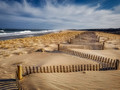 Dune Fence & Surf, Early Spring