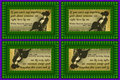 162 Alice Roosevelt Longworth on Gossip (wallet print)