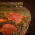 Garden Urn and Fall Leaves