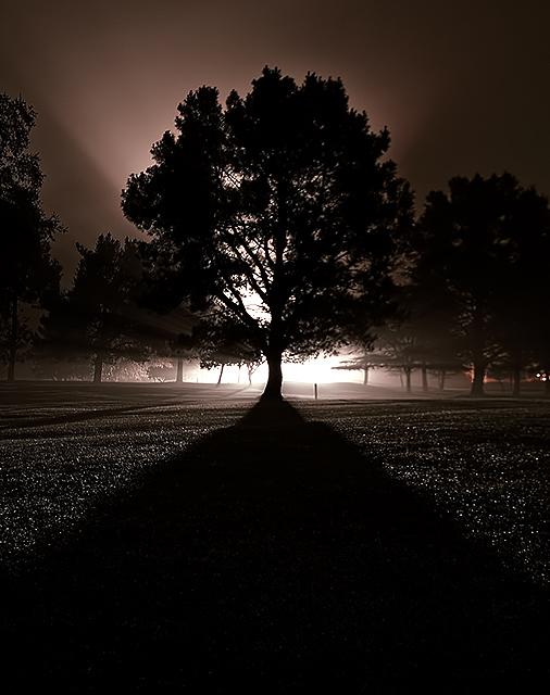 Dark Path Bright Light