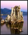 Tufa at Dawn, Mono Lake