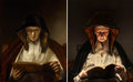 "Rembrandt van Rijn. ""Portrait of an old woman reading"" (1650)"