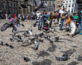 Pigeons and tourists