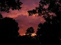 Arial sunset p8300016.jpg