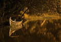 backwaters canoe reflection.jpg