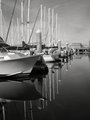 Marina reflections in B&W