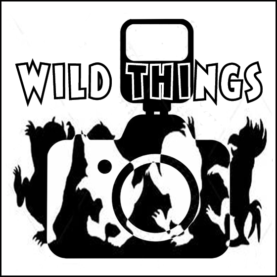 re-edit wild things remove one white bkgrnd copy