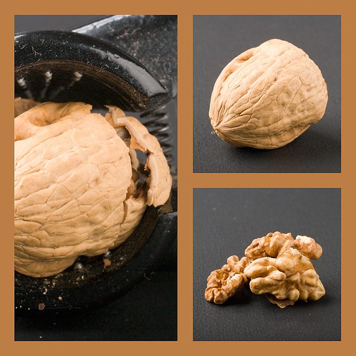 Feb 03 - Cracking a nut