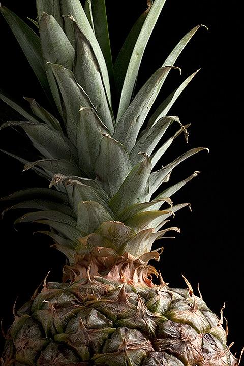 April 10 - Pineapple