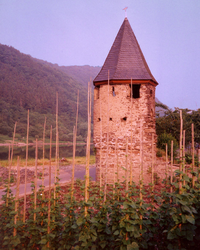 Mosel Tower
